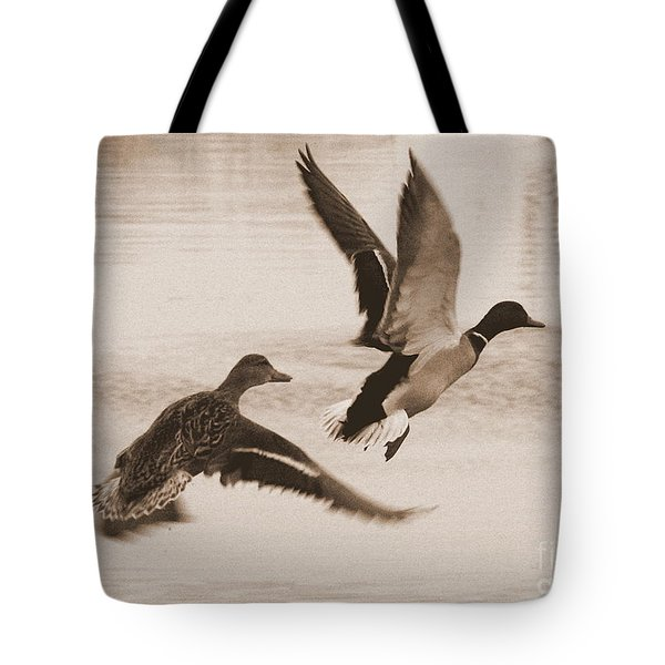 Two Winter Ducks in Flight Tote Bag by Carol Groenen