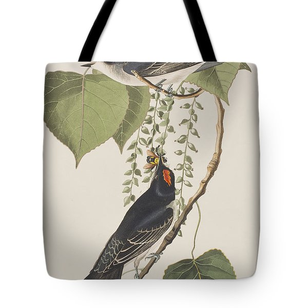 Tyrant Fly Catcher Tote Bag by John James Audubon