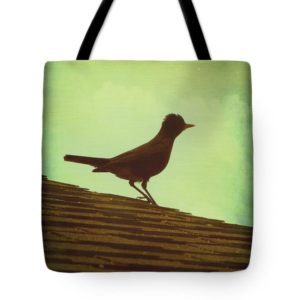 Up on a Roof Tote Bag by Amy Tyler