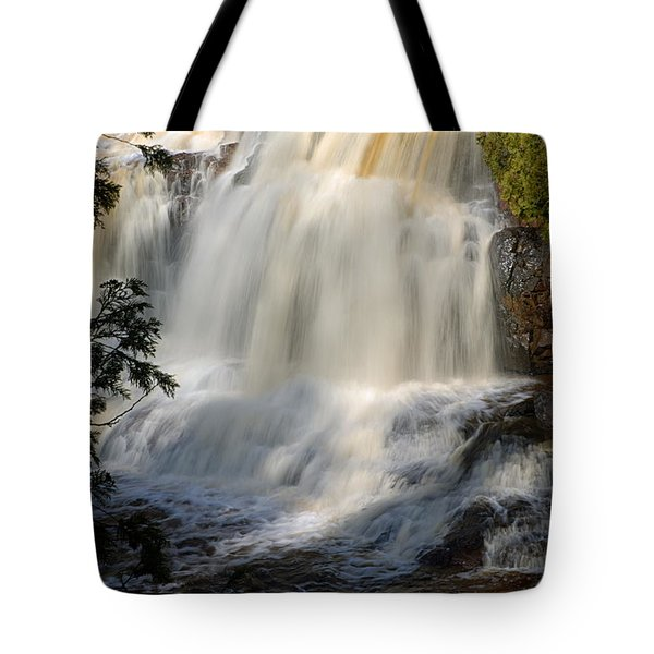 Upper Falls Gooseberry River 2 Tote Bag by Larry Ricker