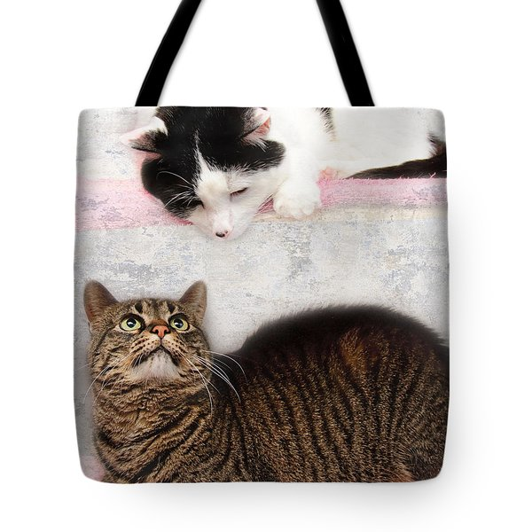 Upstairs Downstairs With Emmy And Pepper Tote Bag by Andee Design