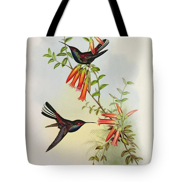 Urochroa Bougieri Tote Bag by John Gould