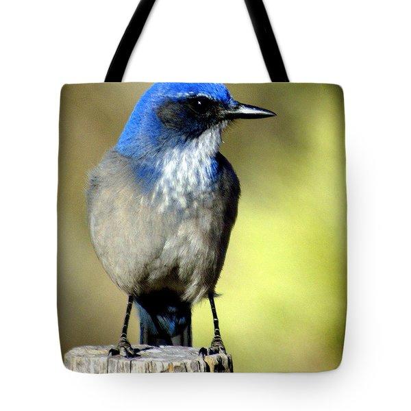 Utah Bird Tote Bag by Marty Koch
