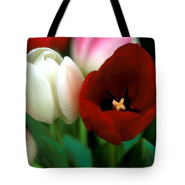 Valentine Tulips Tote Bag by Kathy Yates