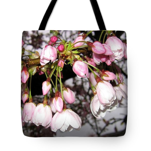 Vancouver Cherry Blossoms Tote Bag by Will Borden
