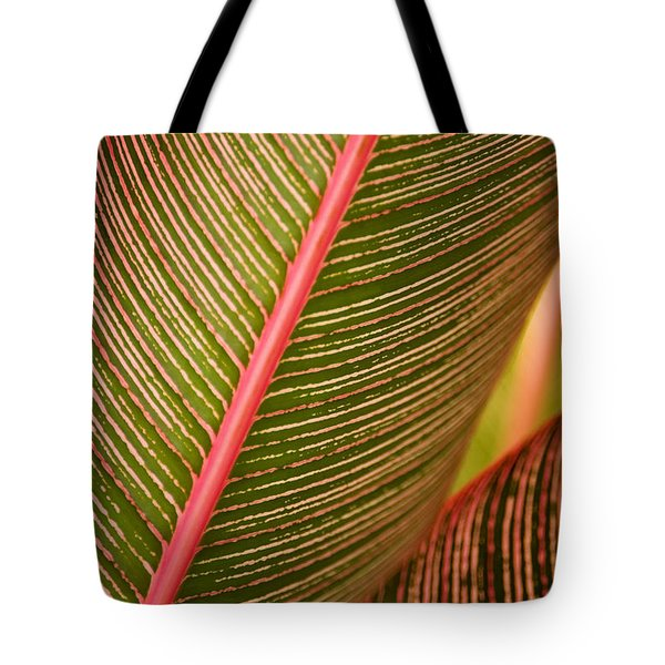 Variegated Ti-leaf 1 Tote Bag by Ron Dahlquist - Printscapes