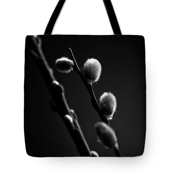 Vernal Awakening Tote Bag by Susan Capuano