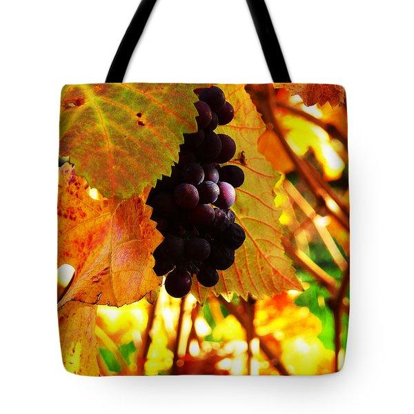 Vineyard 20 Tote Bag by Xueling Zou