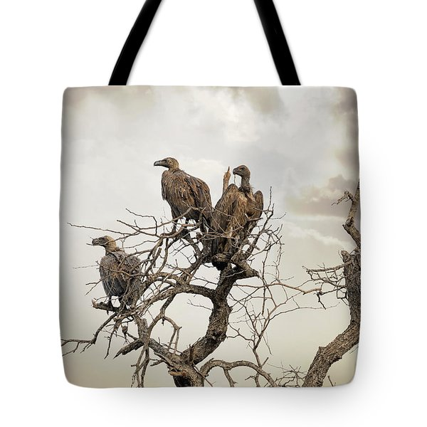 Vultures In A Dead Tree.  Tote Bag by Jane Rix