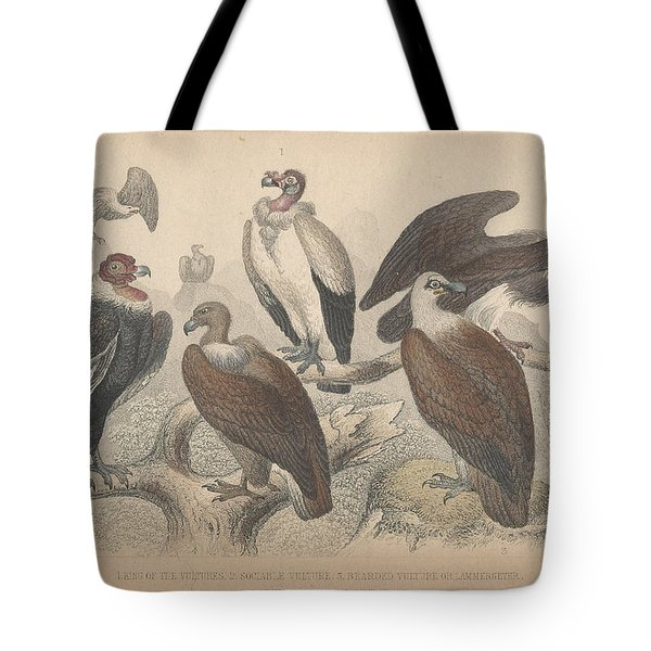 Vultures Tote Bag by Oliver Goldsmith