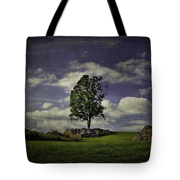 Wake Me Up When September Ends Tote Bag by Evelina Kremsdorf