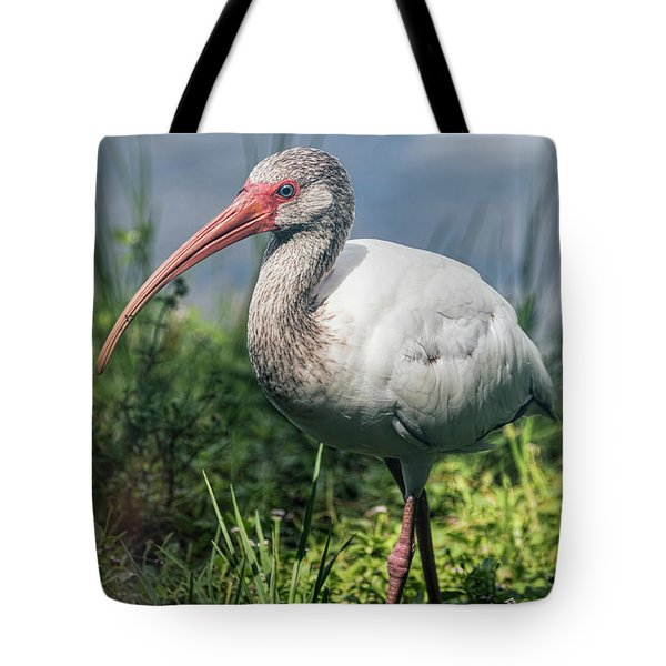 Walk On The Wild Side  Tote Bag by Saija Lehtonen