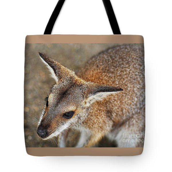 Wallaby Portrait Tote Bag by Kaye Menner