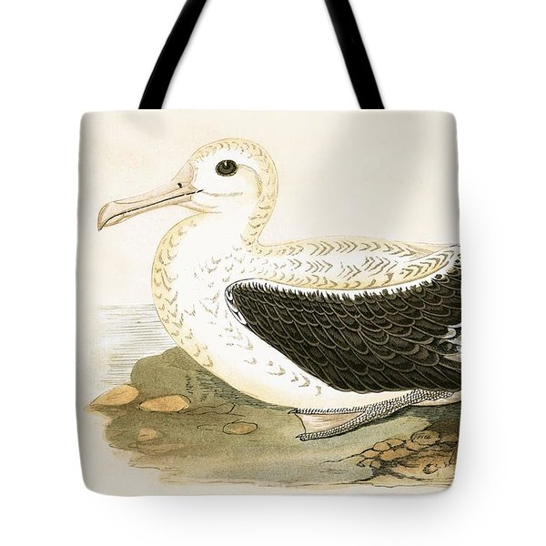 Wandering Albatross Tote Bag by English School