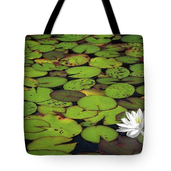 Water Lily Tote Bag by Elisabeth Van Eyken