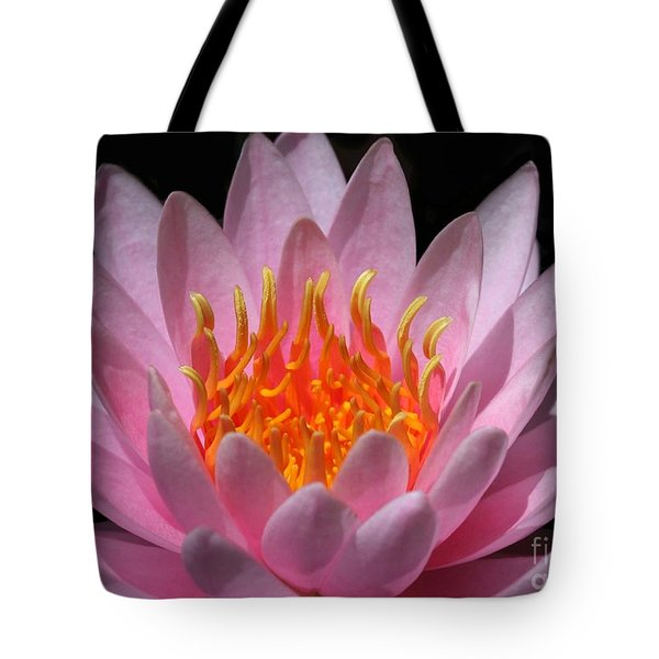 Water Lily On Fire Tote Bag by Sabrina L Ryan
