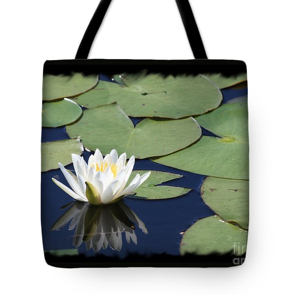 Water Lily With Black Border Tote Bag by Carol Groenen