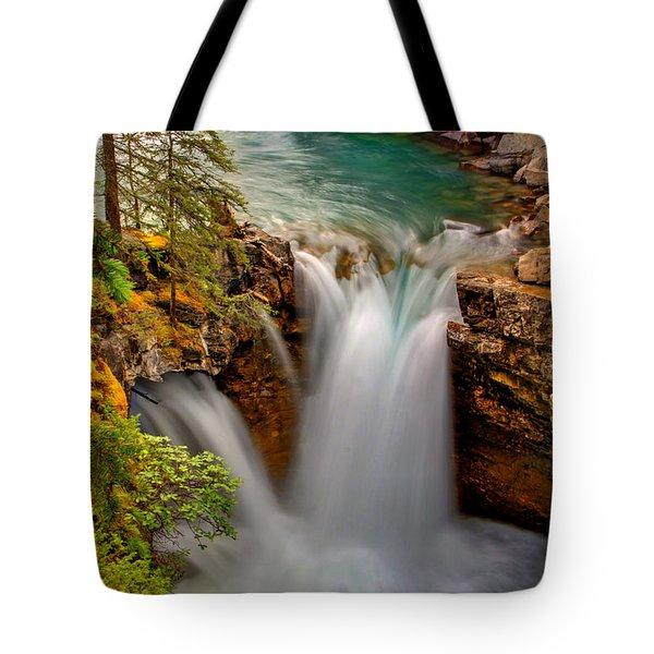 Waterfall Canyon Tote Bag by Scott Mahon