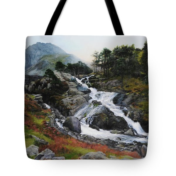 Waterfall In February. Tote Bag by Harry Robertson