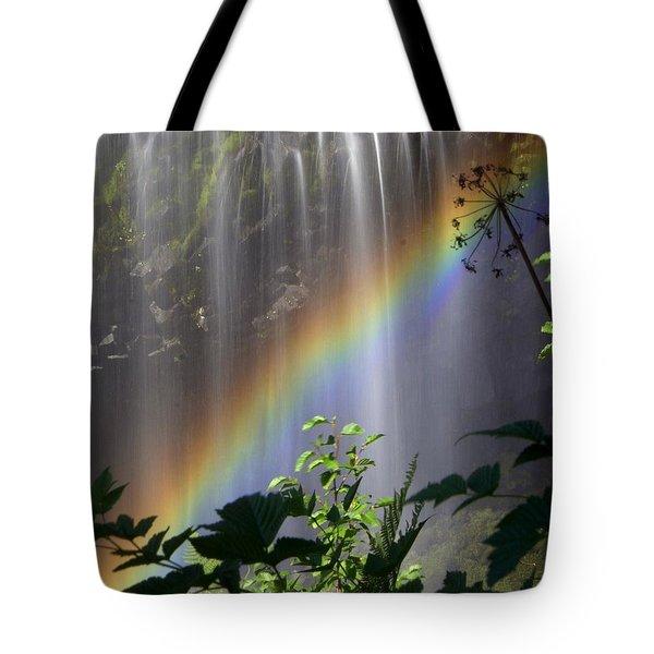 Waterfall Rainbow Tote Bag by Marty Koch