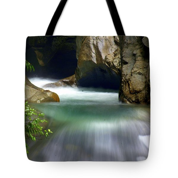 Waterworks Tote Bag by Marty Koch