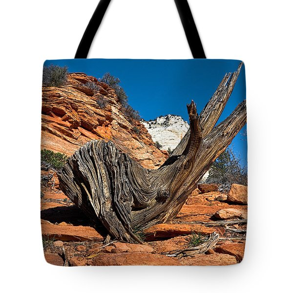 Weathered Check Tote Bag by Christopher Holmes