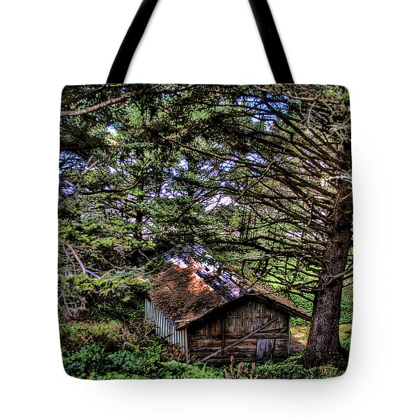 Weathered Shed Tote Bag by David Patterson