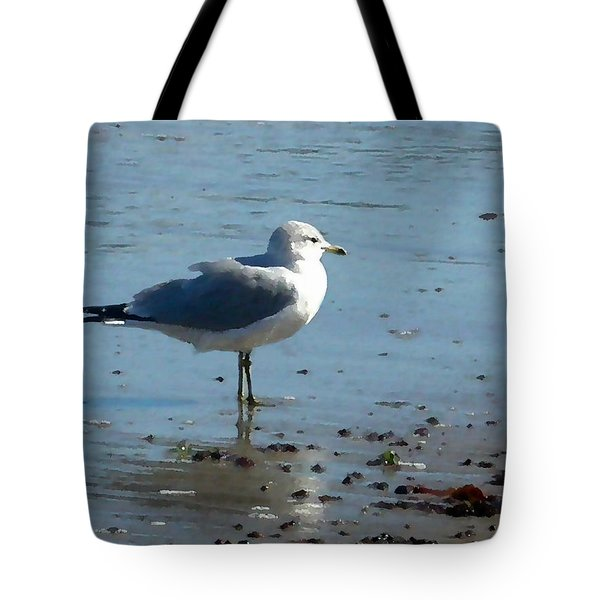 Wet Feet Tote Bag by Paul Sachtleben