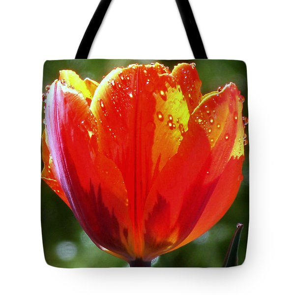 Wet Tulip Tote Bag by Rona Black