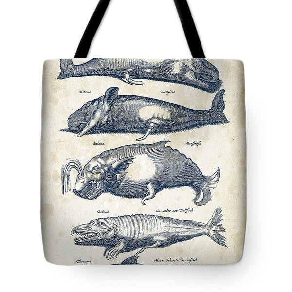 Whale Historiae Naturalis 08 - 1657 - 41 Tote Bag by Aged Pixel