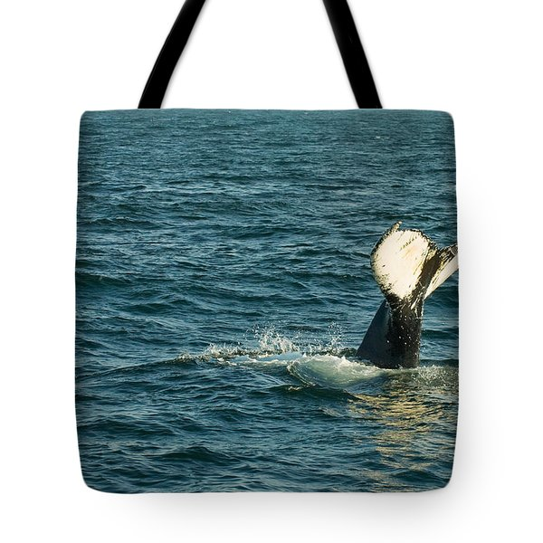Whale Tote Bag by Sebastian Musial