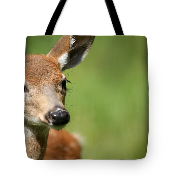 What A Face 1 Tote Bag by Karol Livote