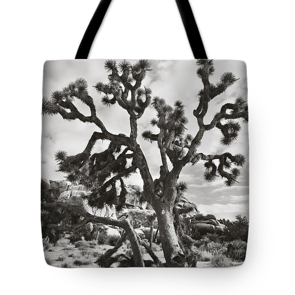 What I Wouldn't Give Bw Tote Bag by Laurie Search