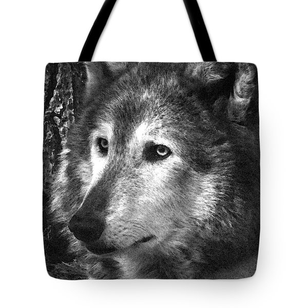 What Is A Wolf Thinking Tote Bag by Karol Livote