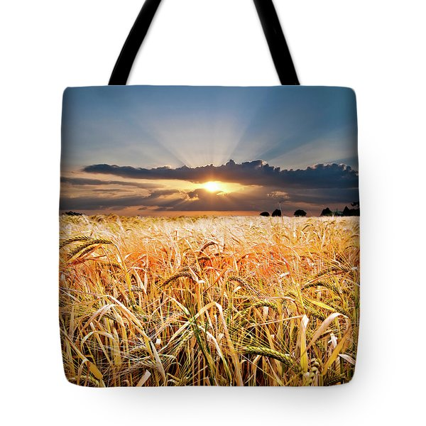 wheat at sunset Tote Bag by Meirion Matthias
