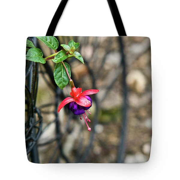 Wheel and Fushia Blossom Tote Bag by Douglas Barnett