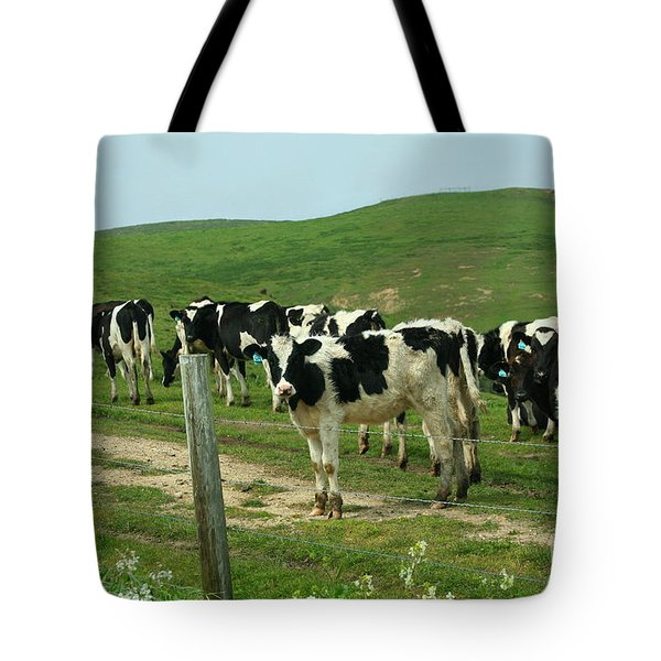When the Cows Come Home Tote Bag by Wingsdomain Art and Photography
