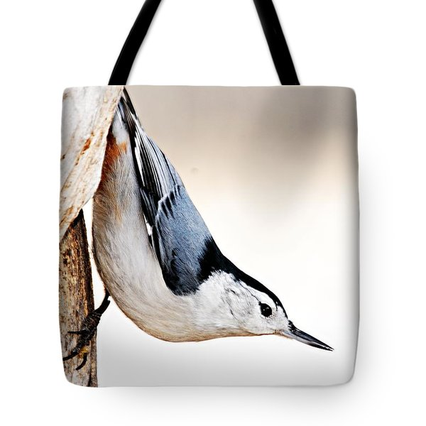 White-breasted Nuthatch Tote Bag by Larry Ricker