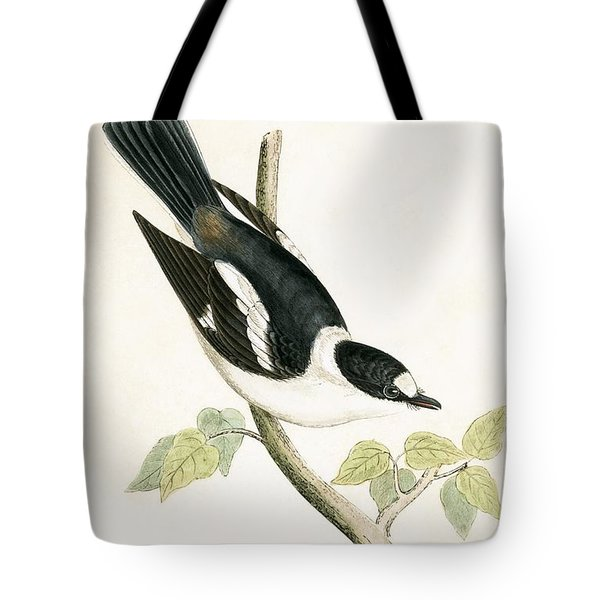 White Collared Flycatcher Tote Bag by English School
