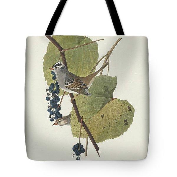 White-crowned Sparrow Tote Bag by John James Audubon