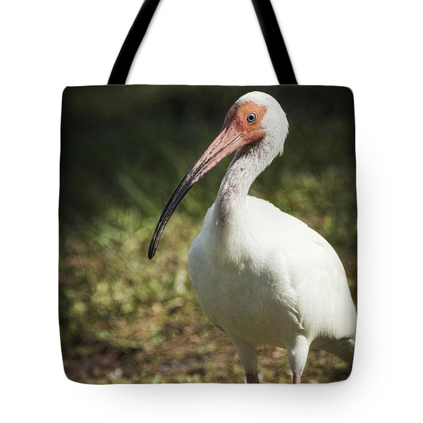 White Ibis On A Walk  Tote Bag by Saija  Lehtonen