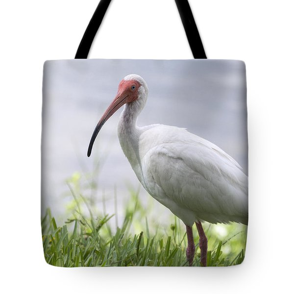 White Ibis  Tote Bag by Saija  Lehtonen