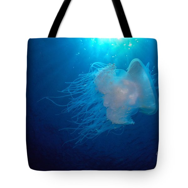 White Jellyfish Tote Bag by Dave Fleetham - Printscapes