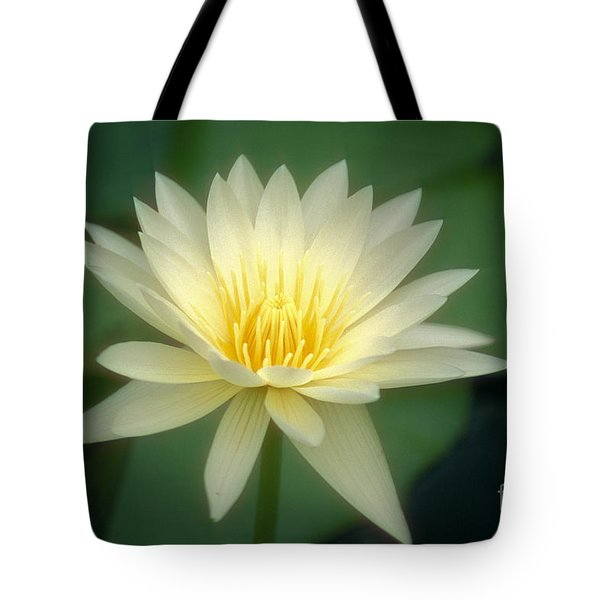 White Lily Tote Bag by Ron Dahlquist - Printscapes