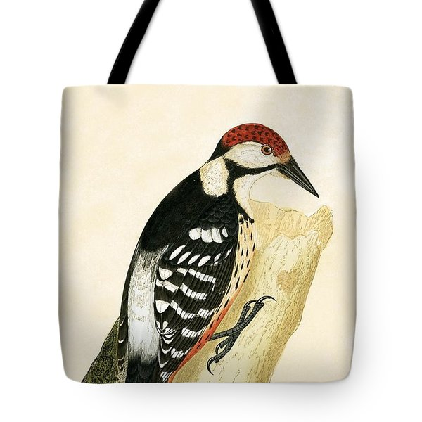 White Rumped Woodpecker Tote Bag by English School