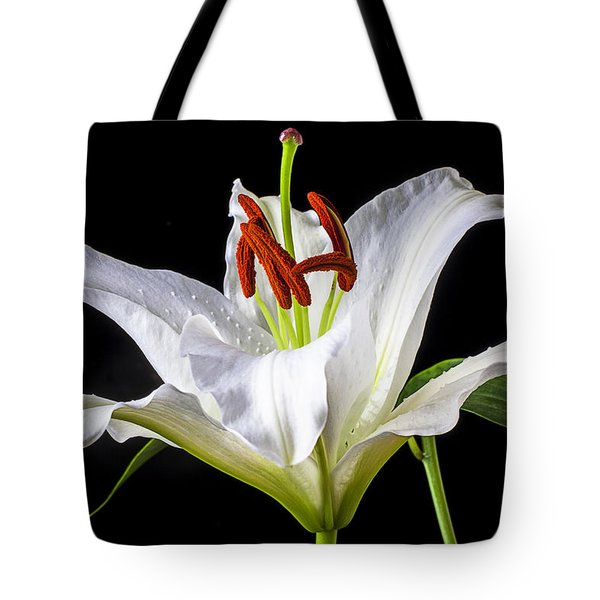 White Tiger Lily Still Life Tote Bag by Garry Gay