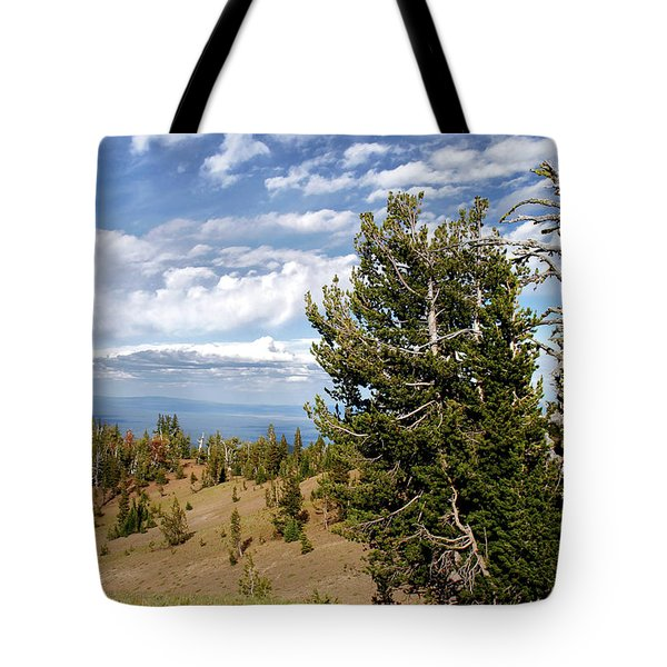 Whitebark Pine trees Overlooking Crater Lake - Oregon Tote Bag by Christine Till