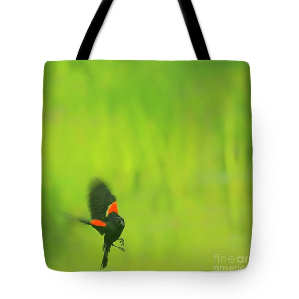 Who are you looking at Tote Bag by Aimelle