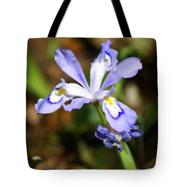 Wild Iris Tote Bag by Marty Koch