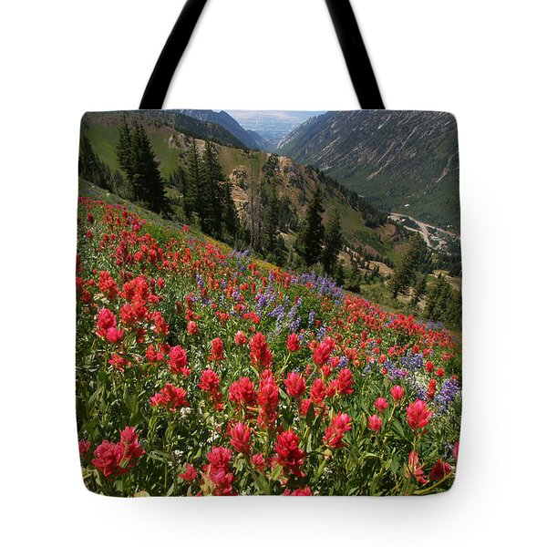 Wildflowers And View Down Canyon Tote Bag by Brett Pelletier
